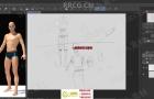 人类结构骨骼肌肉形态绘画解剖原理视频教程