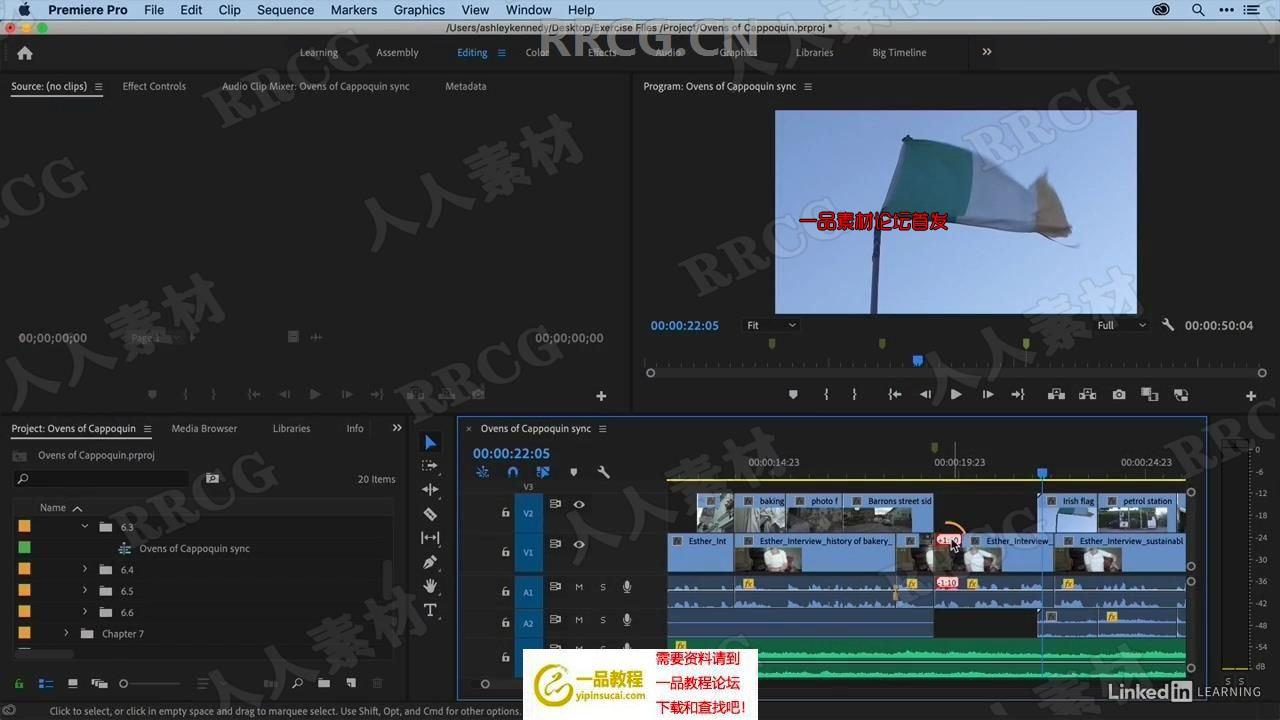 Premiere Pro 2020视频剪辑基础核心技术训练视频教程