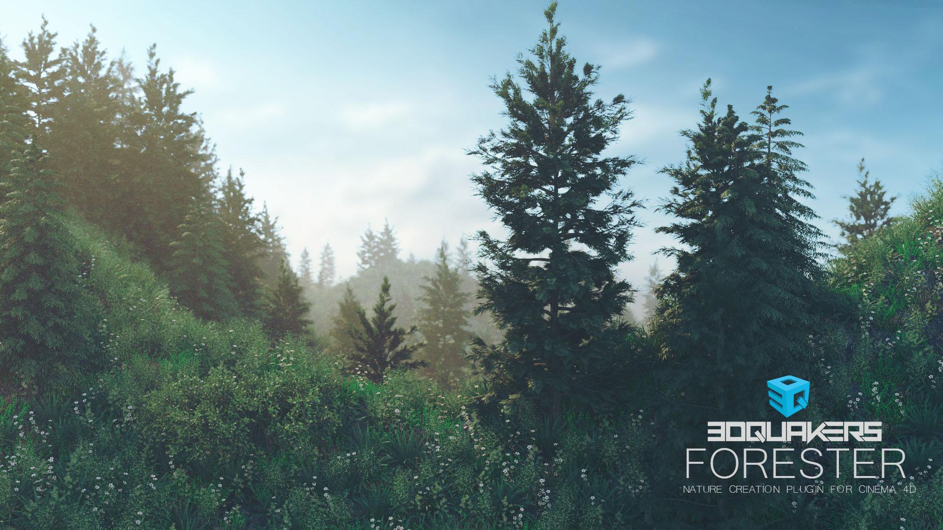 Forester-Sunset-01.jpg