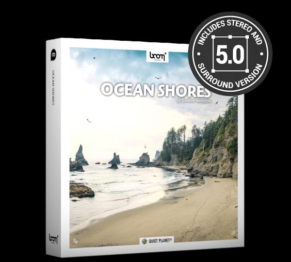 ocean shores环境海浪海鸥鸟叫环绕立体无损音效Stereo+Surround