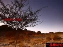 人间仙境撒哈拉高清实拍视频素材