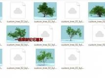 榕树模型大集合