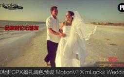 50组FCPX婚礼调色预设 MotionVFX mLooks Wedding Edition