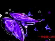 紫色漂亮蝴蝶飞舞高清VJ浪漫婚礼婚庆led大屏幕视频背景素材