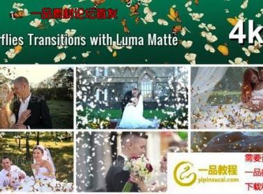 蝴蝶遮罩转场视频素材 Butterflies Transition with Luma  ...