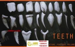 24组Zbrush牙齿雕刻3D模型与笔刷合集