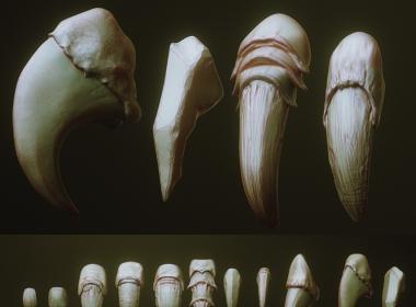 ZBrush动物爪子3D模型预设 Artstation – NAILS – 24 Character & Creature Claws & Nails
