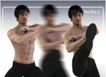 Daz/Poser - AniMate Martial Arts Combos