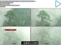 清晨高山烟雾浓浓孤立树木生长倔强精神自然景色高清视频实 ...