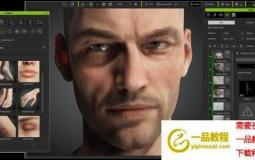 Character Creator人物模型皮肤肢体预设 Reallusion – Makeup & SFX, Human Anatomy Set Bo