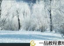 iCube vol.3 Winter trees Vray