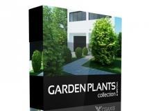 CGAxis Models Volume 19 Garden Plants 园林植物模型下载