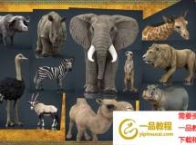 非洲野生动物3D模型 Cubebrush – Wild Africa Pack (MAX/FBX/MB/OBJ格式)