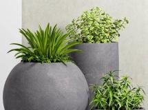 3D盆景植物  现代绿植盆栽3D模型下载