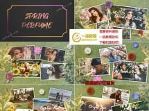 春天的香味,草地上鲜花中的照片展示AE模板