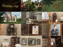 蝴蝶飞进城堡,婚礼主题三维相册AE模板