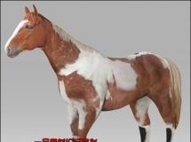 一只棕马FBX模型