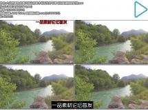 大自然景色优美河流丛林树木岩石生态环境环保高清视频实拍