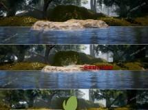 标志出现在自然林间的湖面石头上AE模板