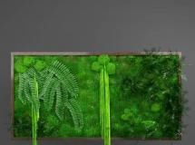 3D墙饰模型  墙上装饰绿植3D模型下载