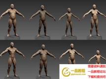 Zbrush模型下载  ZB雕刻人体模型 Human ZBuilder for Zbrush