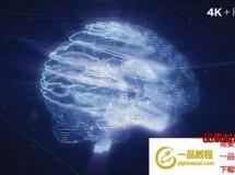 科技感人工智能头脑Logo动画 Digital AI Brain Logo Reveal