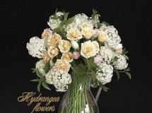 绣球花、玫瑰和郁金香模型 高品质模型