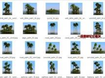 Mentor_Plants.Collection_HQ_Plants_03椰树棕树模型下载