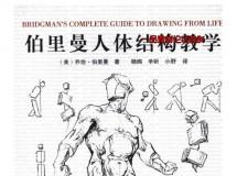 伯里曼人体结构教学书籍杂志