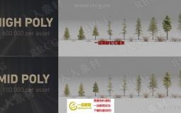 17组树木植物森林3D模型与4K纹理合集