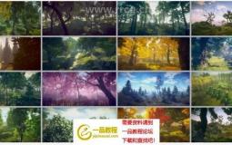 植物森林中树木品种Unity游戏素材资源