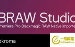 Blackmagic RAW素材导入AE/PR/Encoder插件 Aescripts BRAW Studio v2.1.2 Win/Mac破解版
