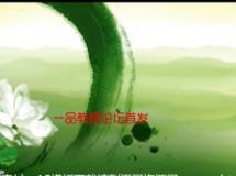 [更新]中国风清新水墨茉莉花歌舞晚会古典led大屏幕视频背景素材
