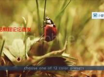 AE模版-电影级颜色校正复古色彩预设文件