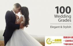 100组婚礼视频LUTS调色预设 Wedding Color Corrections (AE/Pr/FCPX/达芬奇/PS等)