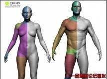 3D扫描店男女基础模型