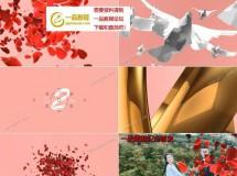 5款婚礼主题的转场动画素材AE模板