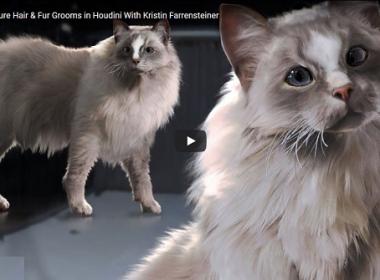 Houdini动物毛发特效教程 Creating Creature Hair & Fur Grooms in Houdini with Kristin Farrensteiner