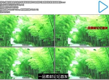 清新创意虚实结合场景绿油油树木画面树叶飘落树林背景视频 ...
