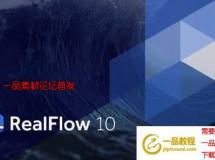 Realflow 10 C4D/MAX/Maya/Houdini/Softimage接口插件 Win/Mac