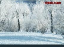 iTrees-03 (冬季树木)