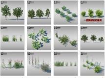 Maxtree 网站的植物和场景合集