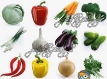 辣椒 包菜茄子蔬菜模型 高品质模型 TurboSquid