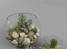 3D摆件模型  玻璃鱼缸花瓶3D模型下载