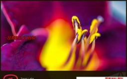 图片调节软件 Topaz Studio v2.3.1 Win/Mac破解版