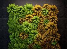 3D墙饰模型  植物墙3DMAX模型