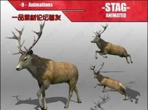 牡鹿动画 3D 模型