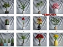 CGAXIS植物收集1