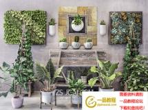 3D盆景植物  植物盆栽组合3D模型下载