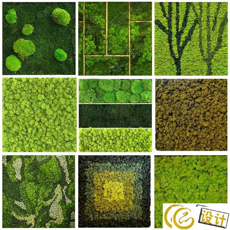 8万g素材下载 69 3dmax贴图下载 高清晰110款植物墙贴图下载  &#282